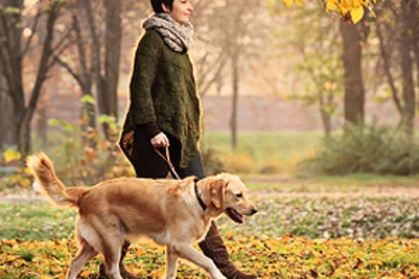 woman walking dog image
