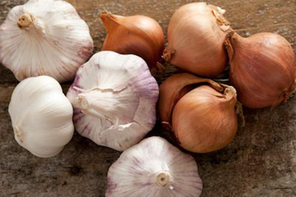 Garlic and onions contain sulfur compounds that increase bad breath