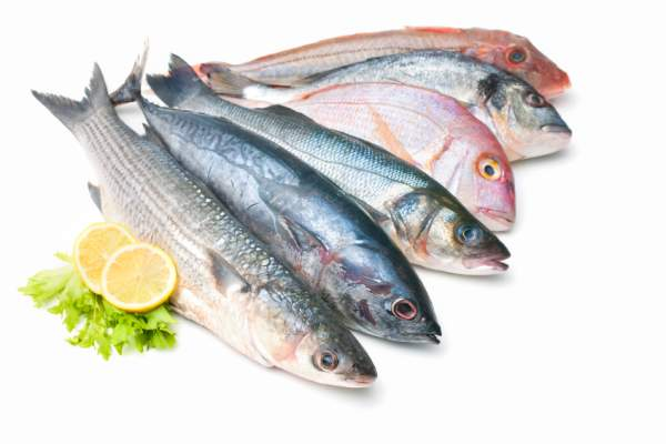 fresh fish image