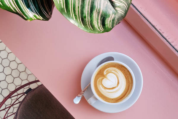 latte on pink counter