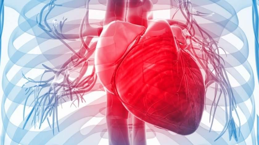 heart attack vs cardiac arrest pdf