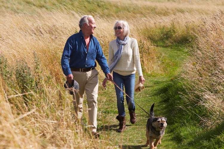 An older couple takes a brisk walk through a field with their dog.