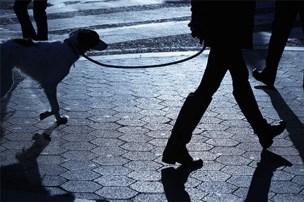 Woman walking the dog in the evening on a sidewalk.