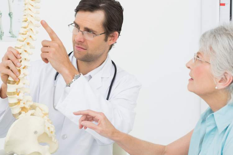 A chiropractor shows a woman a model of a human spine.