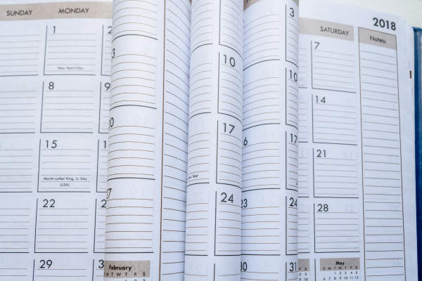 Various pages of calendars with lines to make notes on