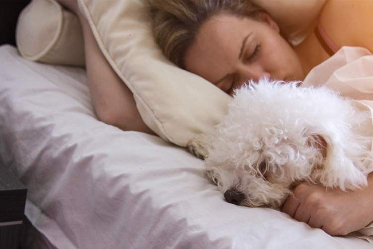 Woman and dog sleeping in bed.