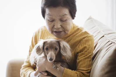 Senior woman holding her small dog in a living room chair at home.