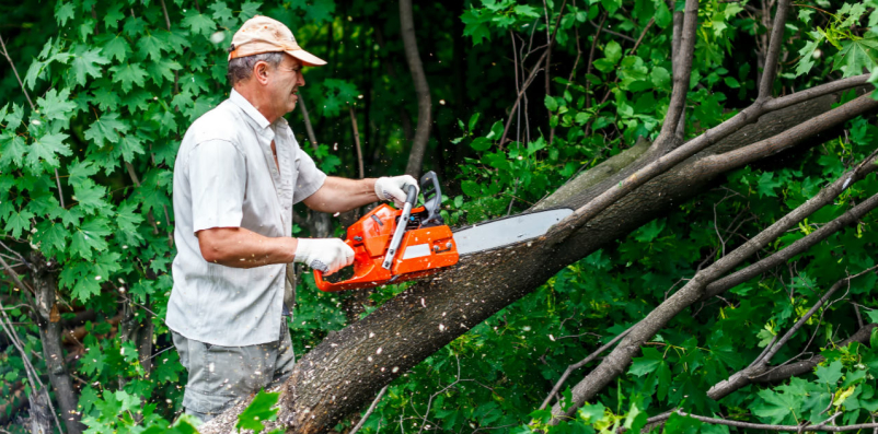 man using chainsaw with no hearing protection