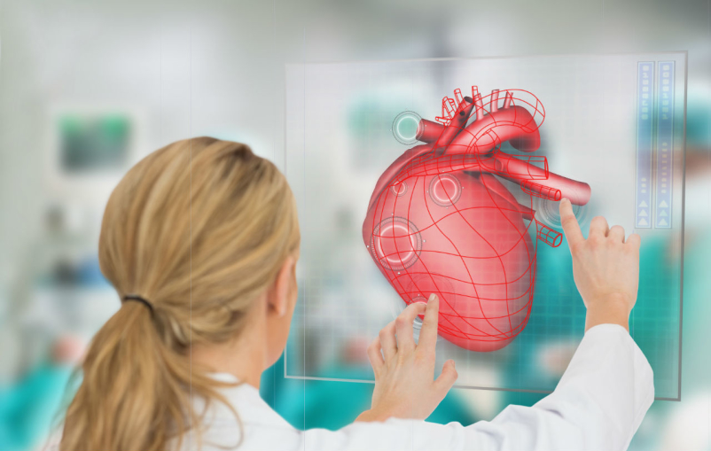 doctor viewing heart