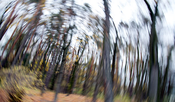 Spinning forrest photo, dizziness concept.