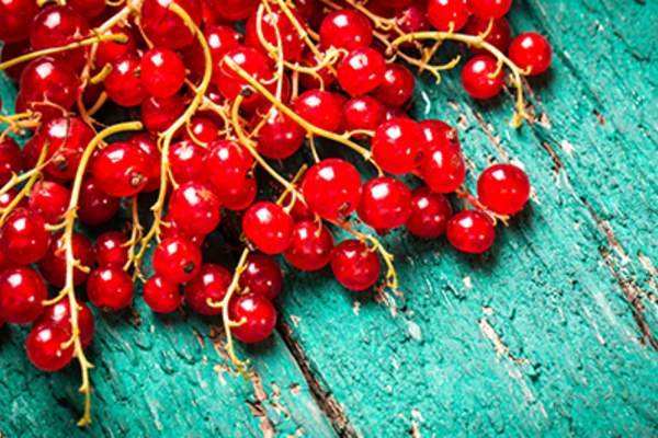 Fresh red currant on wooden table