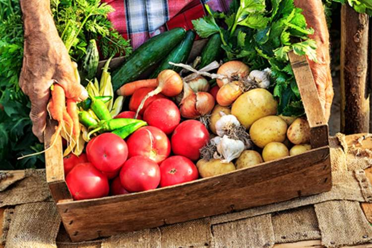 A box of organically grown produce for a diabetes diet.
