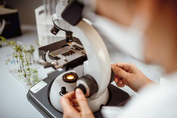 scientist looking in microscope
