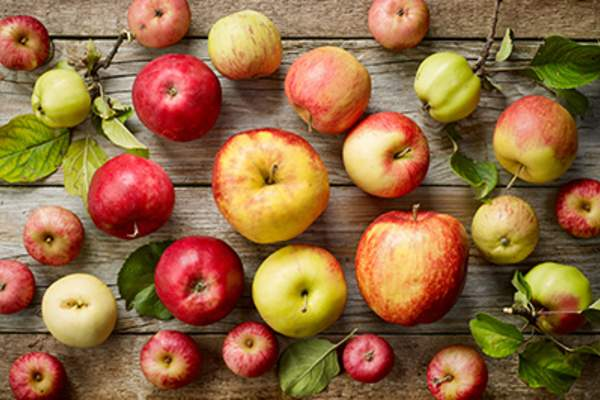 Various kinds of apples.