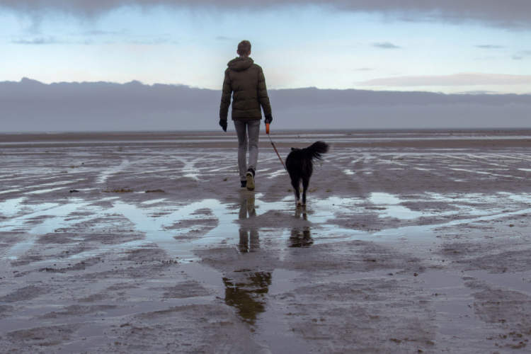 man walking dog in wet sand