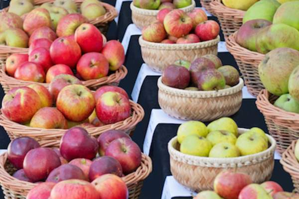 Different kinds of apples in baskets at farmers market.