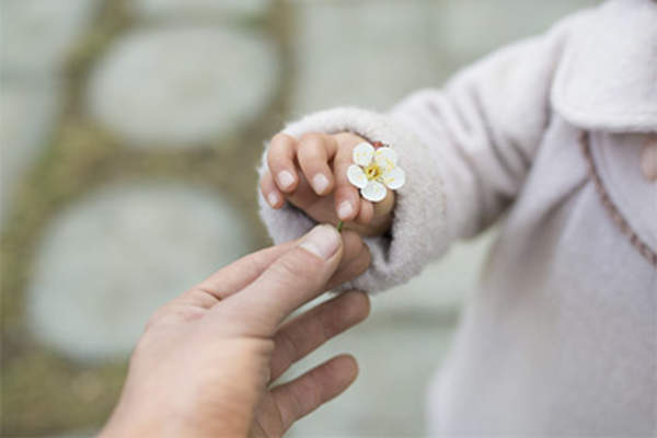 Child with small flower, giving it to an adult.