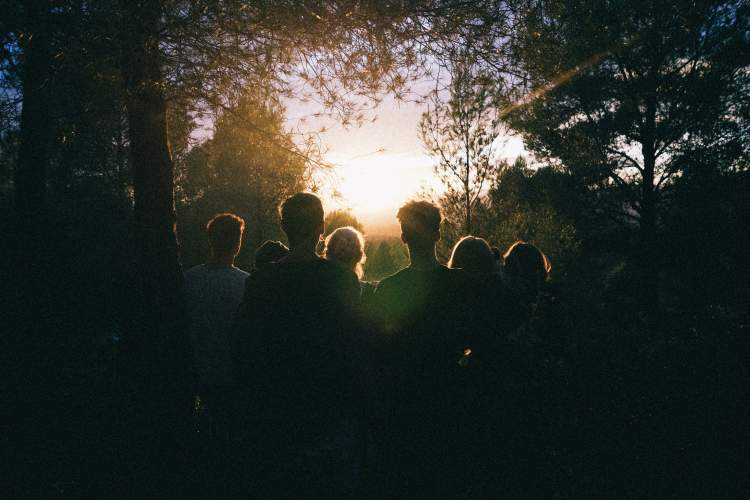 group of people backlit in the woods