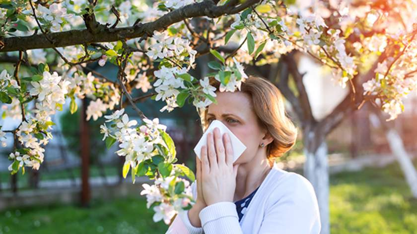 Acid Reflux and Seasonal Allergies | HealthCentral