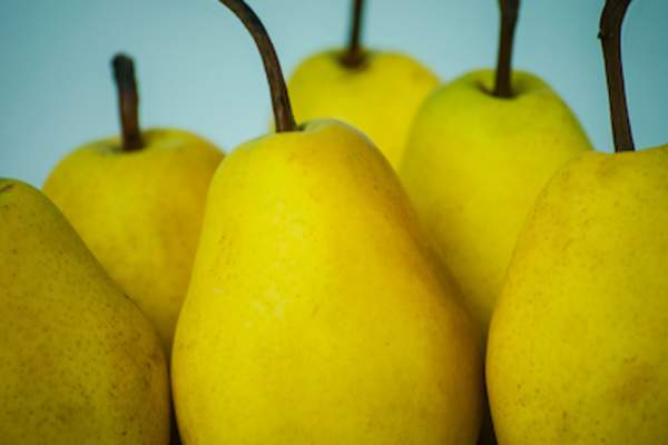 Close up of whole pears.