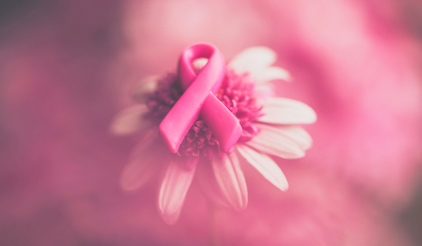 Breast cancer awareness ribbon on pink flower.