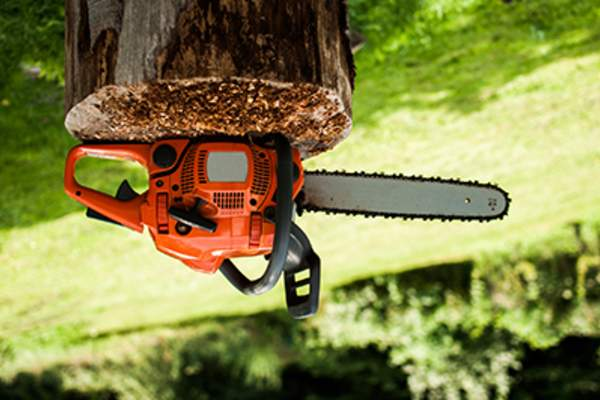 Chainsaw on a stump upside down.