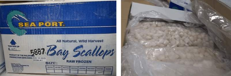 recalled scallops