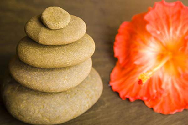 Balanced stones and flower.