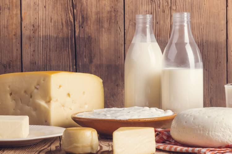 Full fat dairy products are OK to eat on the DASH diet.