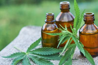 Cannabidiol (CBD) oil and marijuana leaves, alternative treatment for RA pain.