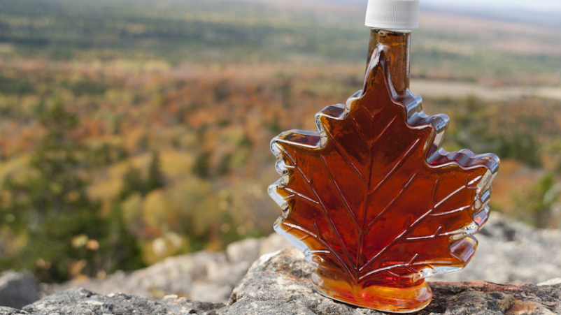 Maple syrup bottle on rock ledge info front on fall forest.