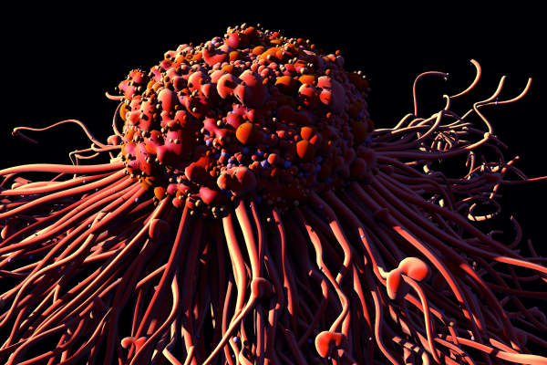 cancer cell