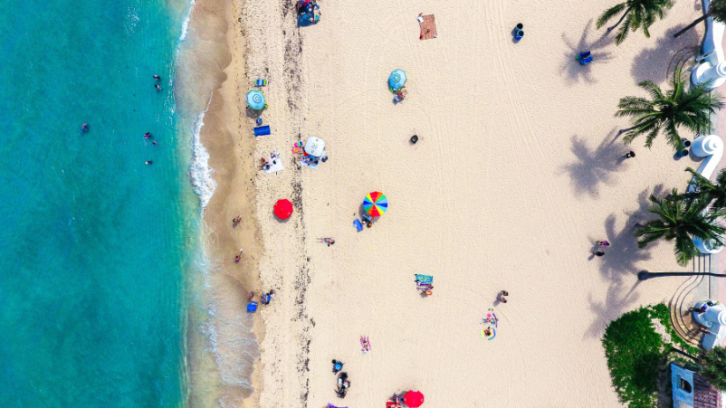 Bird's-eye view of tropical beach