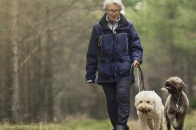 Why Walking a Dog Does a Body Good