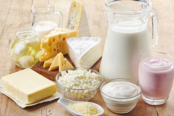 Fresh dairy products, milk, cheese, butter and yogurt.
