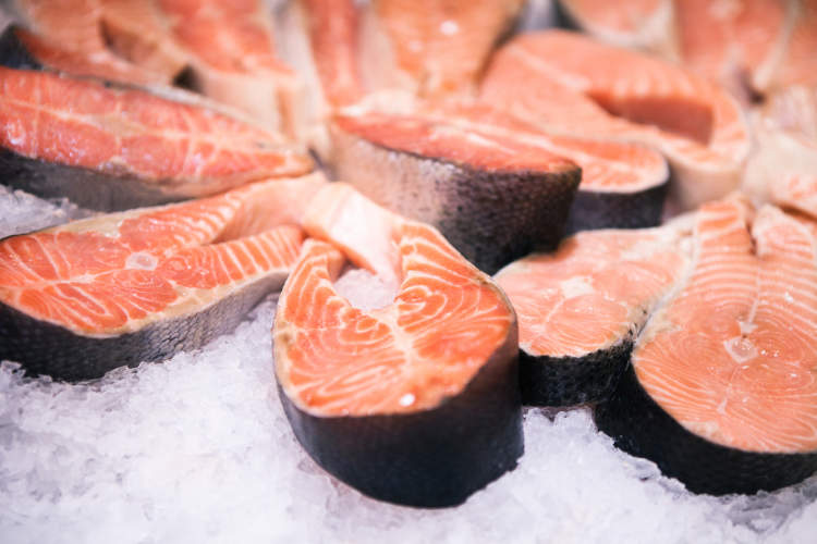 Fresh salmon with ice