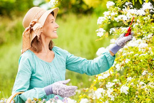 Woman pruning flowers in a garden while wearing a wide-brimmed hat.