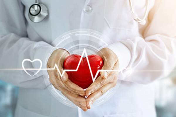 Doctor with stethoscope and red heart shape with icon heartbeat in hands.