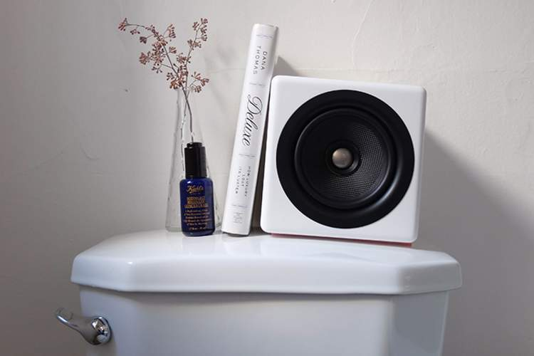 Speaker, flowers and book on top of toilet