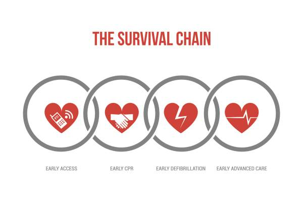 survival chain image