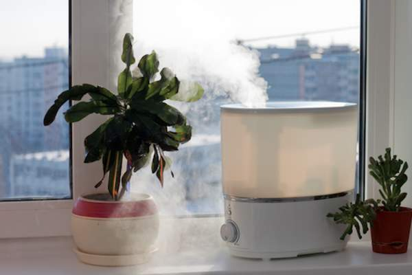 Use a humidifier especially in dry winter months.