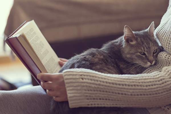 Woman reading book with cat on her lap.