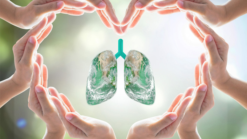 Hands in heart around lung model, healthy lungs concept.
