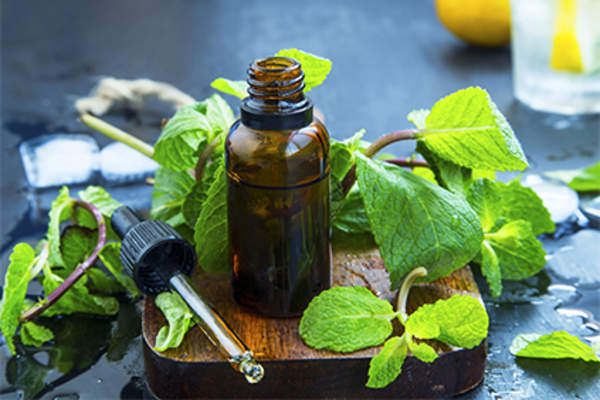 Peppermint oil and leaves.