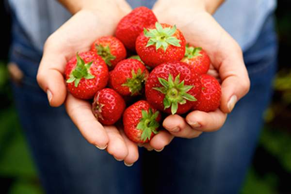 Handful of strawberries.