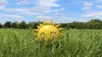 Sun shaped smiling balloon in grass