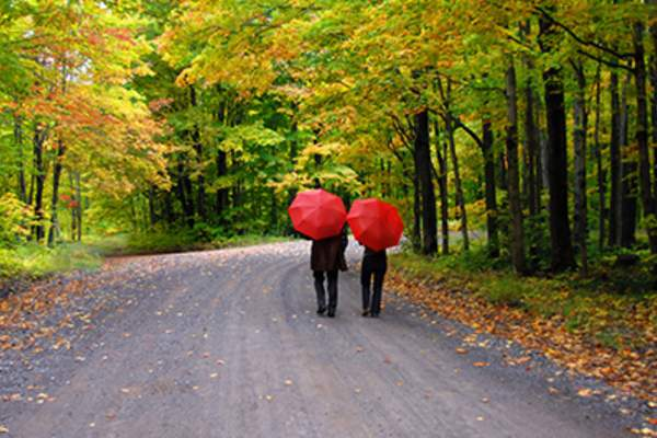 Couple walking on dirt road under two red umbrellas.