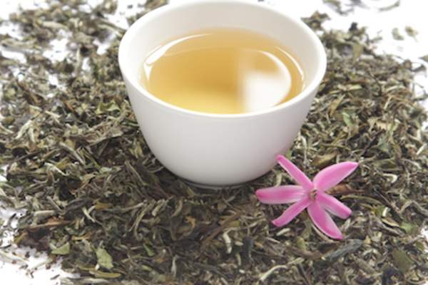 White tea surrounded by dry tea leaves.