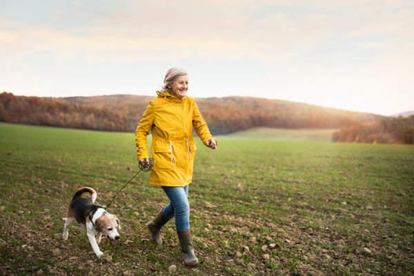 senior woman in yellow raincoat walking dog through field