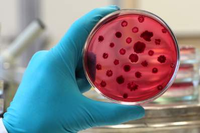Warning About 'Superbugs'